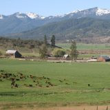 Scott River Ranch